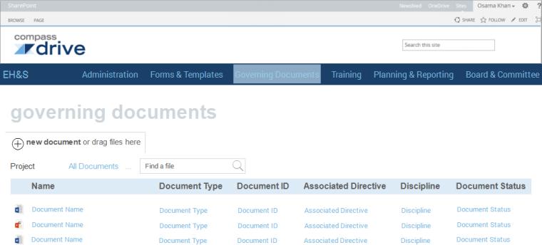 4.Governing Documents